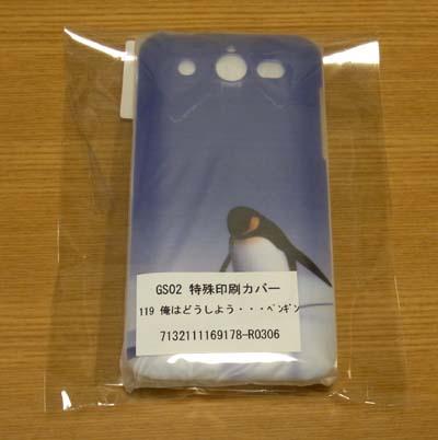 GS02-case1.jpg