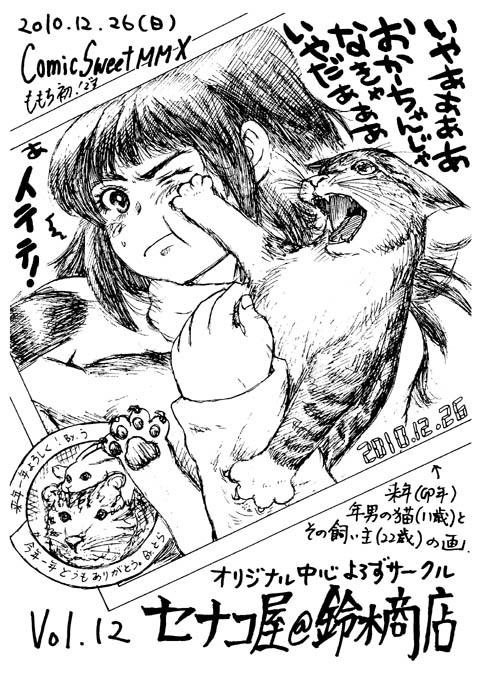 嫁自画像・猫ぷらすペーパー表紙画
