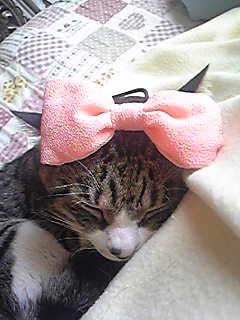 アンクル・キティ(※キティおじさん)。
