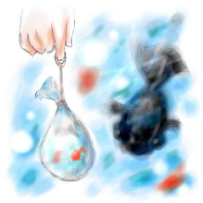 硝子球金魚。