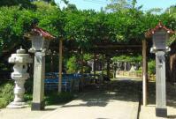 金蛇水神社8