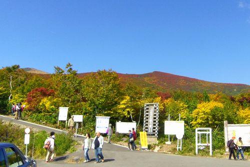 栗駒山2011紅葉1いわかがみ平