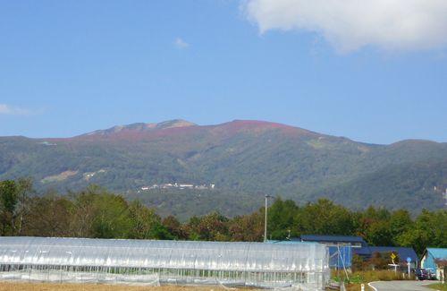 栗駒山2011紅葉4