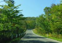 栗駒山2011紅葉5
