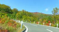 栗駒山2011紅葉6