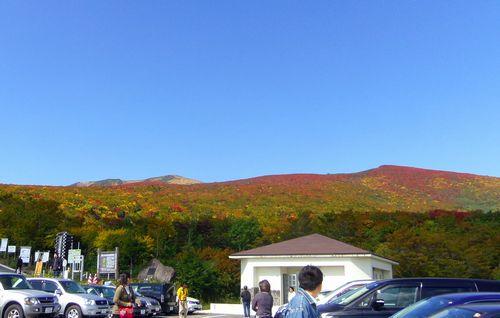 栗駒山2011紅葉8