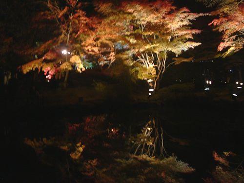 紅葉松島円通寺7