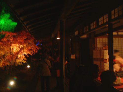 紅葉松島円通寺9