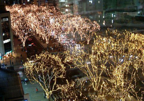 2010仙台光のページェント7