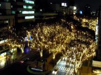 2011仙台光のページェント6