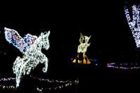 2011仙台光のページェント18