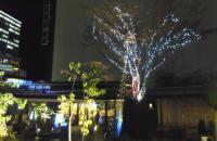 イルミネーション2011仙台駅6エデン