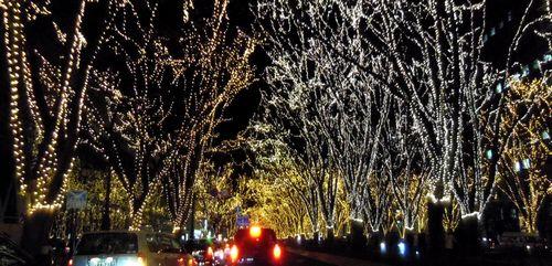 2011仙台光のページェント20