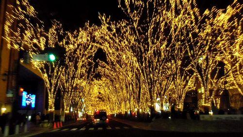 2011仙台光のページェント21