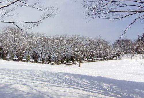白石益岡公園5