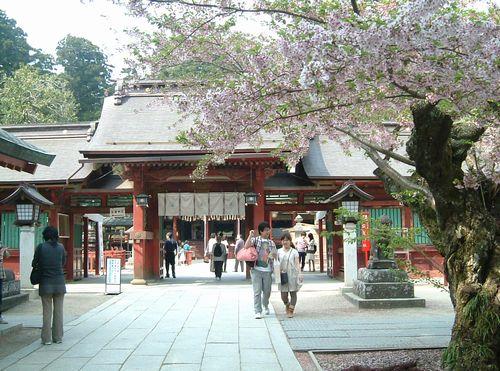 塩釜神社2010桜1