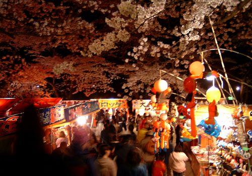 夜桜2009船岡城跡公園2