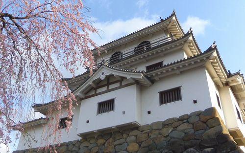 桜花見2012白石城1