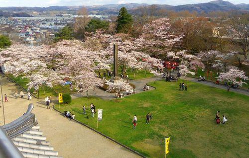 桜花見2012白石城8