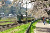 桜2012白石川堤9電車