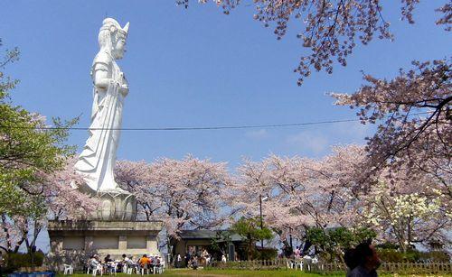 桜2012船岡城跡公園14頂上観音像