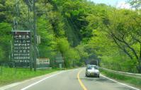 芝桜2012小原温泉3国道113号