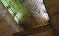 青根温泉じゃっぽの湯17天井