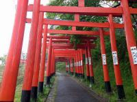 高屋敷稲荷神社4参道