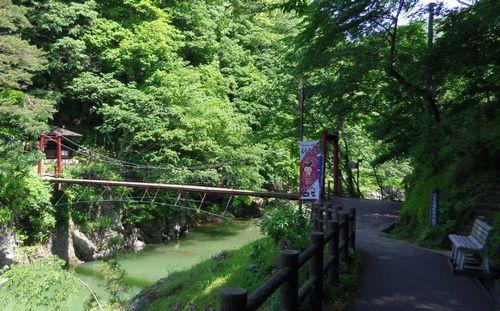 小原温泉かつらの湯新緑7吊り橋
