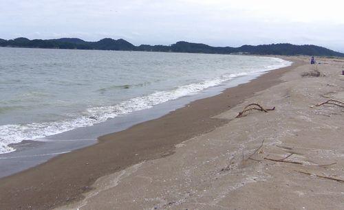 東松島市野蒜震災5野蒜海岸