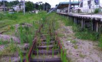 仙石線野蒜駅5