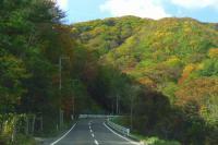 紅葉2012泉ヶ岳7県道223号