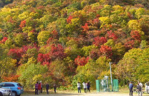 紅葉2012泉ヶ岳9