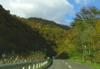紅葉2012泉ヶ岳10