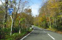 国道398号紅葉の花山峠9