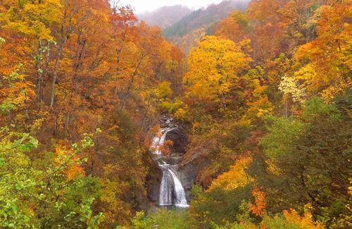 国道398号紅葉の花山峠18板井沢の滝