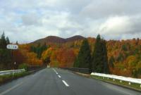 国道398号紅葉の花山峠24朴ノ木(ほおのき)橋