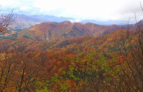 秋田県道282号線5紅葉眺望