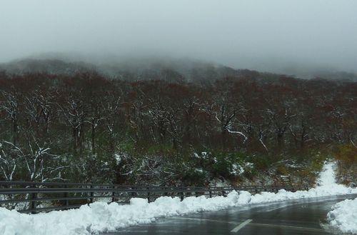 秋田県道282号線7雪道