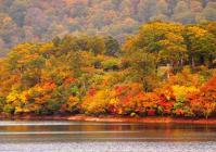 秋田県道282号線10須川湖