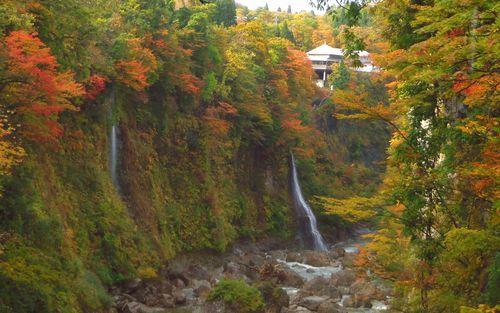 紅葉2012小安峡温泉9皆瀬川小安峡