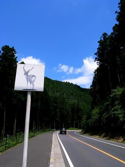 名栗湖 026