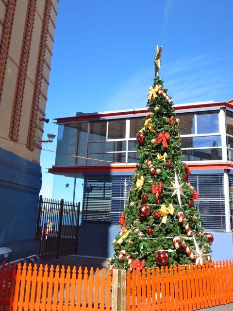 クリスマスツリー4