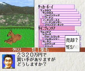 ターフウインド'96 武豊 競走馬育成ゲーム