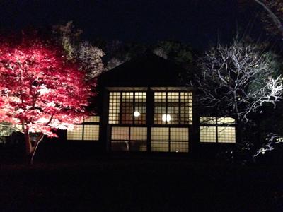 夜の民家園 (江戸東京たてもの園)