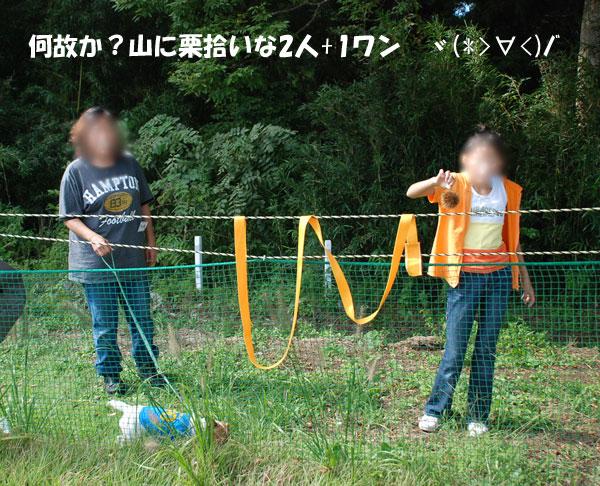 DSC_2156.jpg