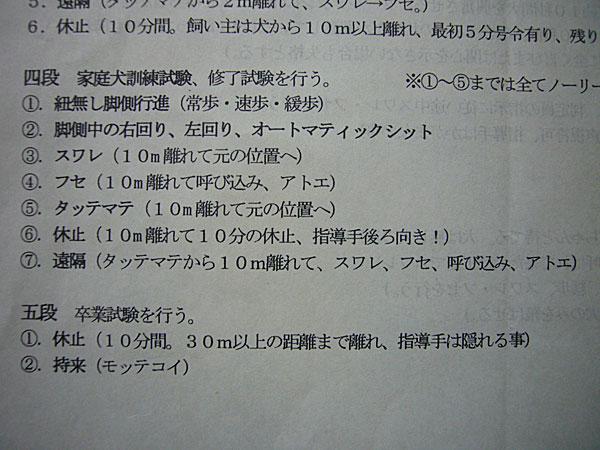 P1100789.jpg