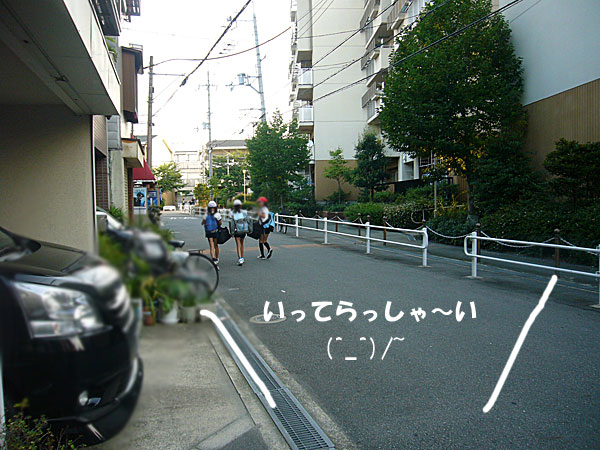P1110539.jpg