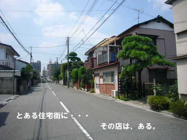 P1120002.jpg