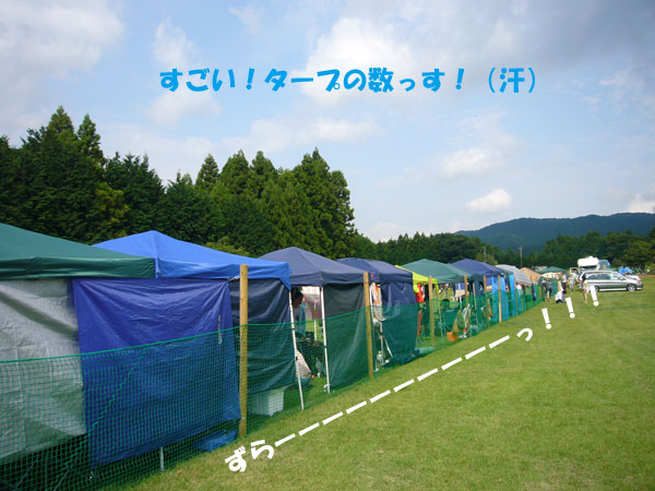 P1120375.jpg